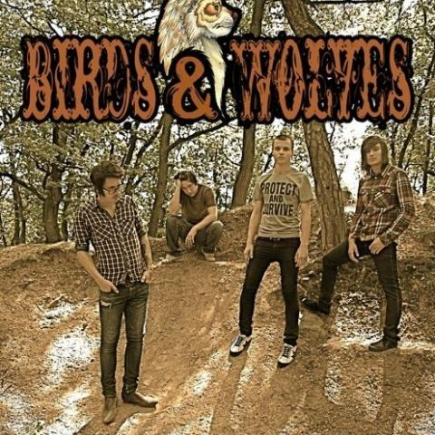 Birds and Wolves