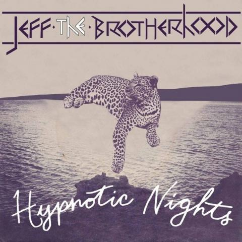 Jeff the Brotherhood - Hypnotic Nights